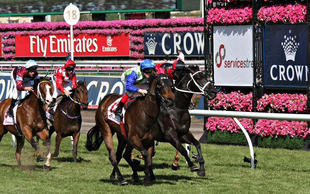 Stayers races melbourne cup