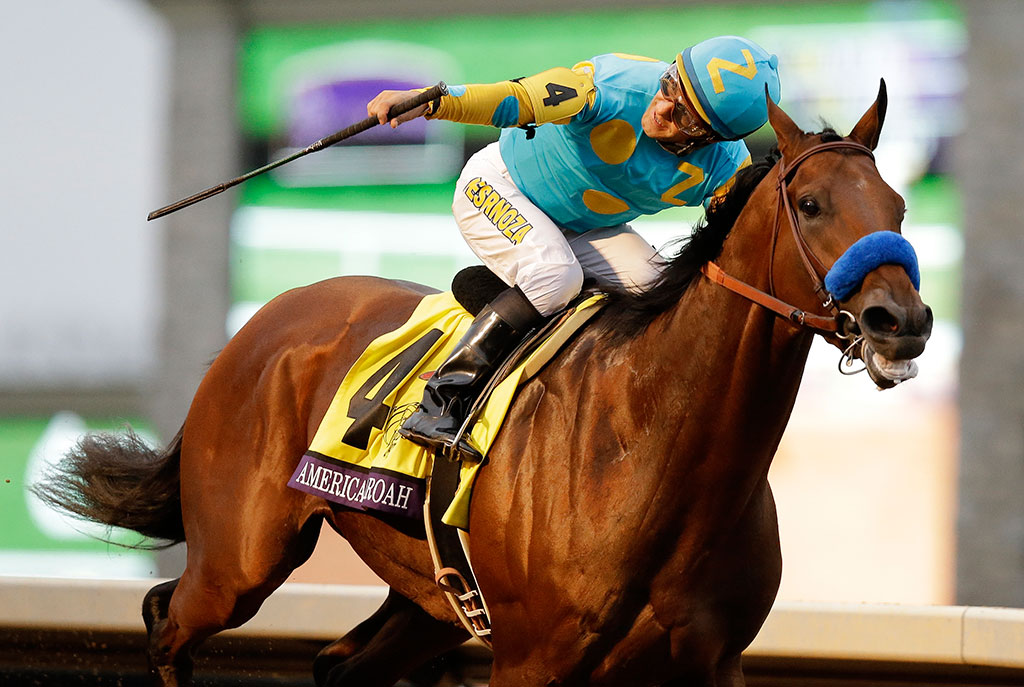 The Most Famous Racehorses In History Bethq
