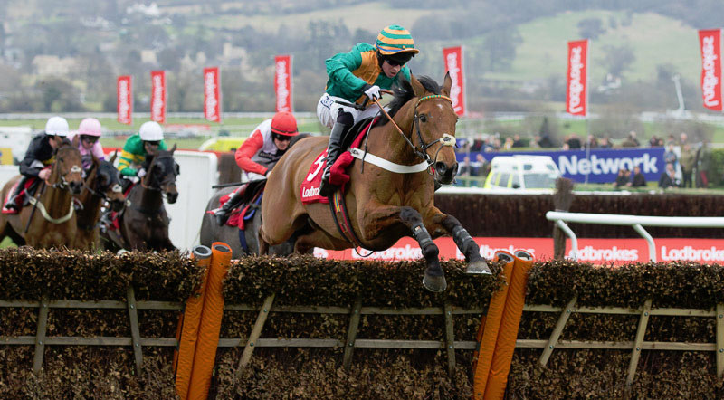 Cole Harden the winner of the 2015 Cheltenham World Hurdle